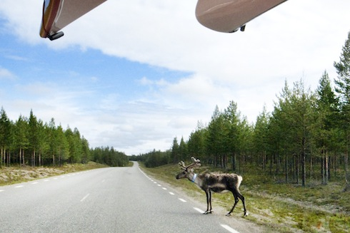 On the Road in Lapland